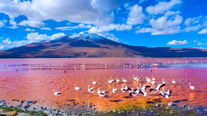 Najväšia soľná pláň v Uyuni